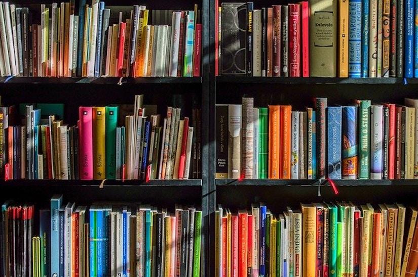 Bunte Buchrücken in einem Bücherregal.