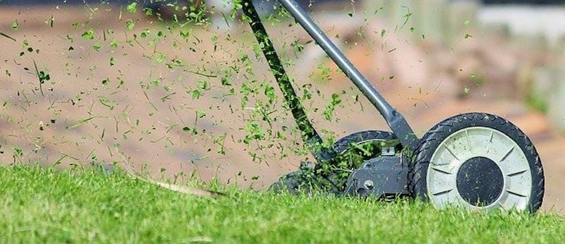 Rasenmäher auf Rasen