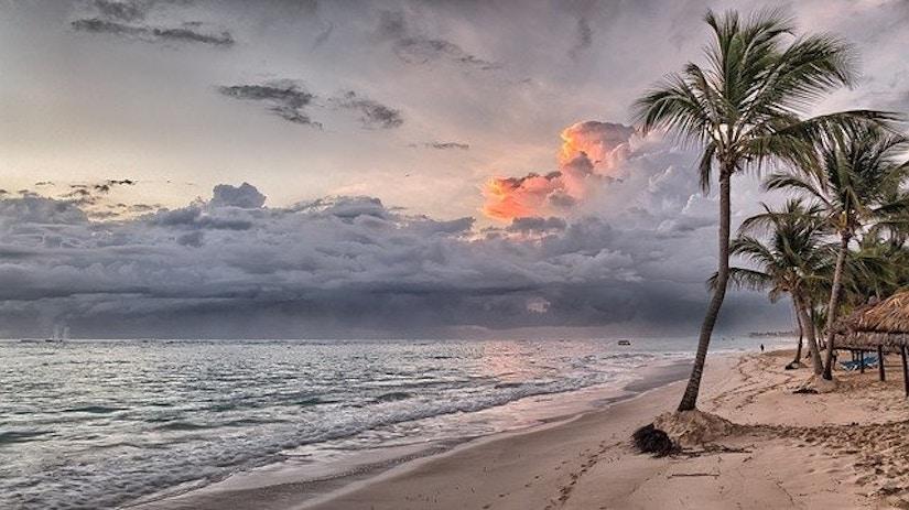 Strand, Ozean und Palmen