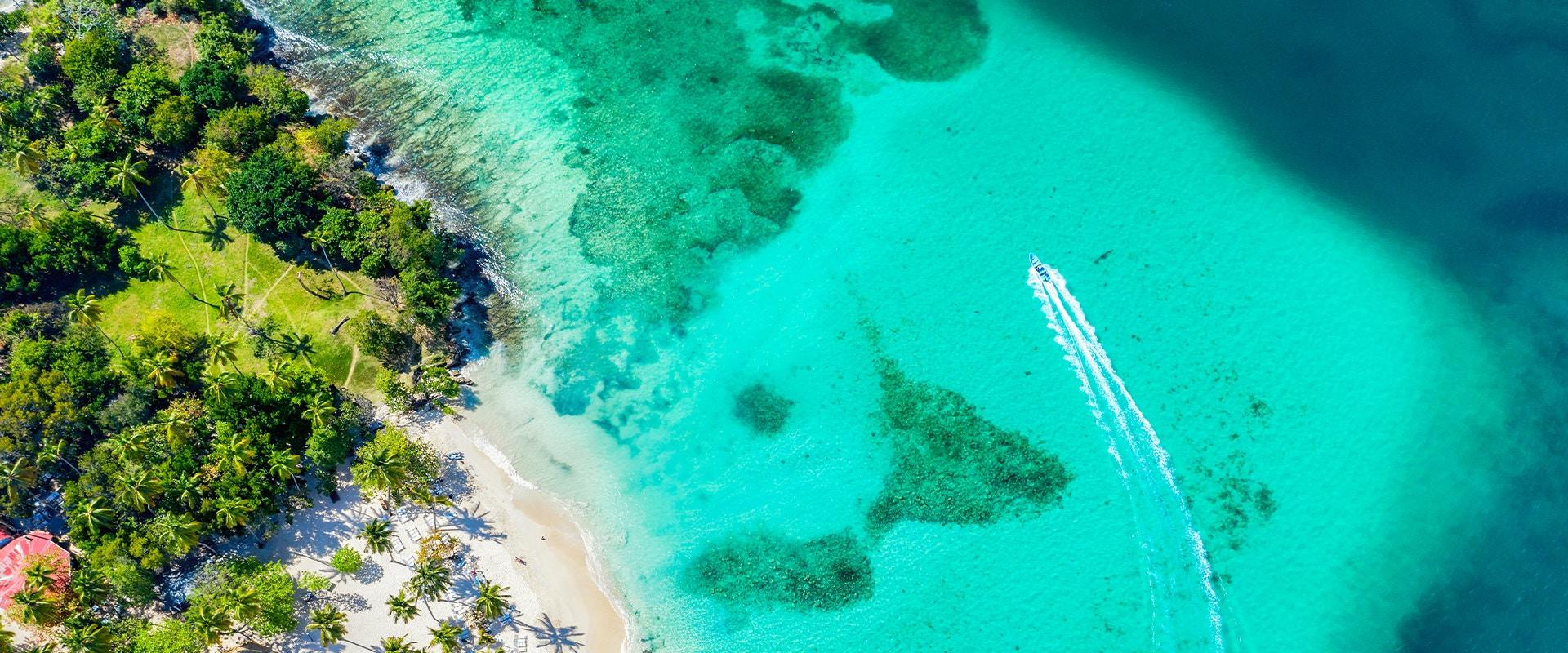 Türkises Wasser, Strand und Palmen von oben.
