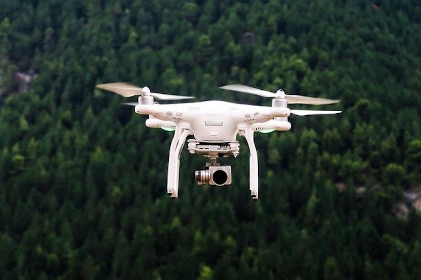 Fliegende Drone über Wald