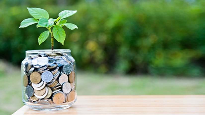 Ein Glas mit Geld auf dem eine Pflanze rankt